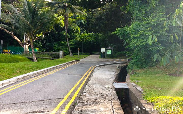 Marang Road, đối diện Vivo City