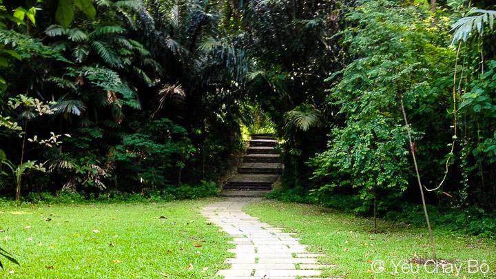 Bắt đầu tiến vào Marang Trail