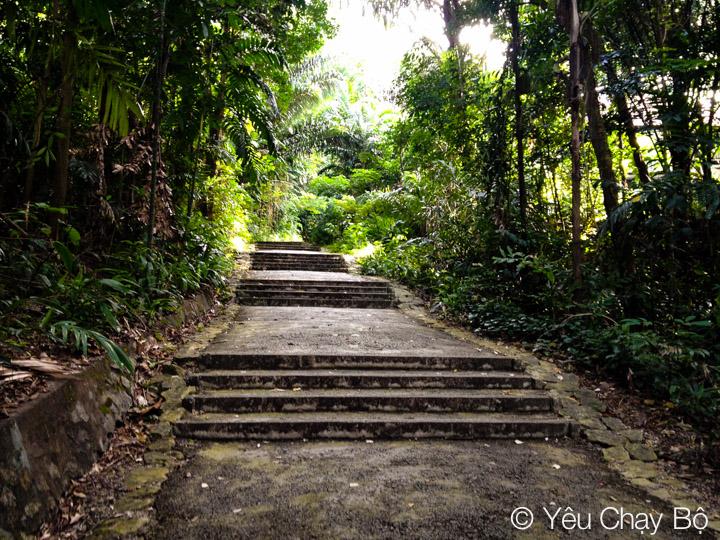 Bậc thang nối tiếp bậc thang trong Marang Trail