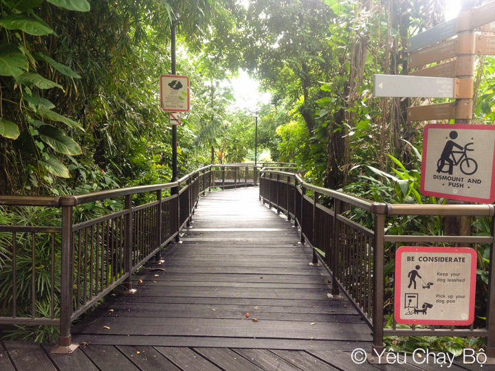 Hort Park – Southern Ridges 23