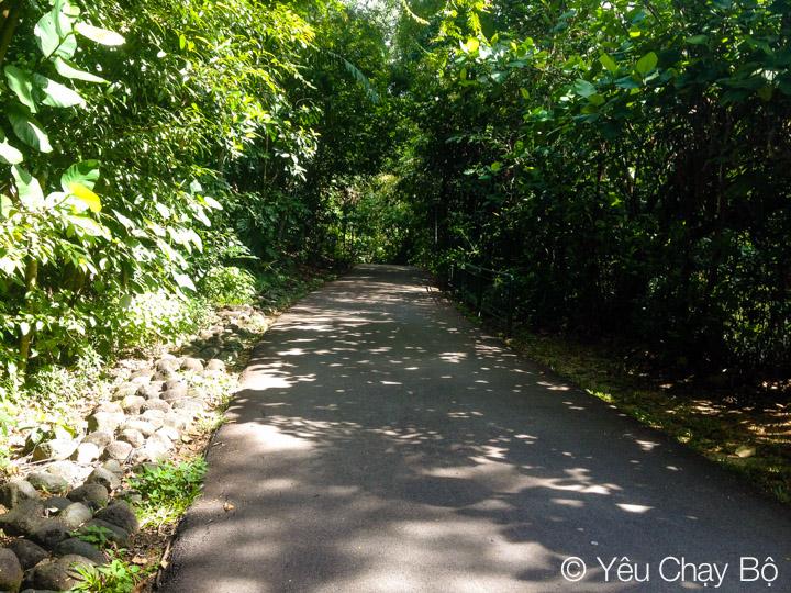 Hort Park – Southern Ridges 25