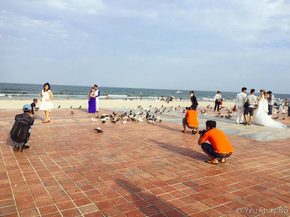 Rất nhiều các cặp đôi đang chụp hình cưới bên cạnh đàn bồ câu