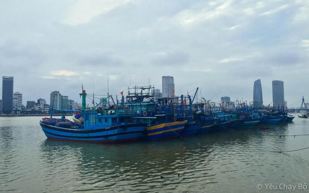 Một nhóm tàu đánh cá neo đậu bên sông