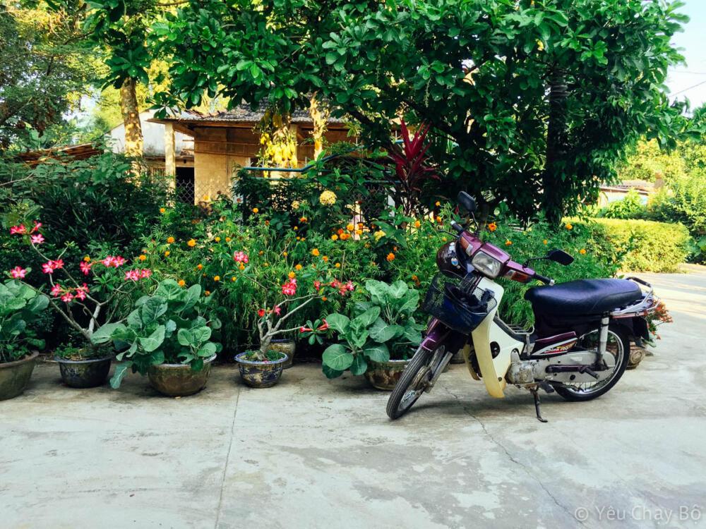 Sân nhà ở quê Quảng Ngãi