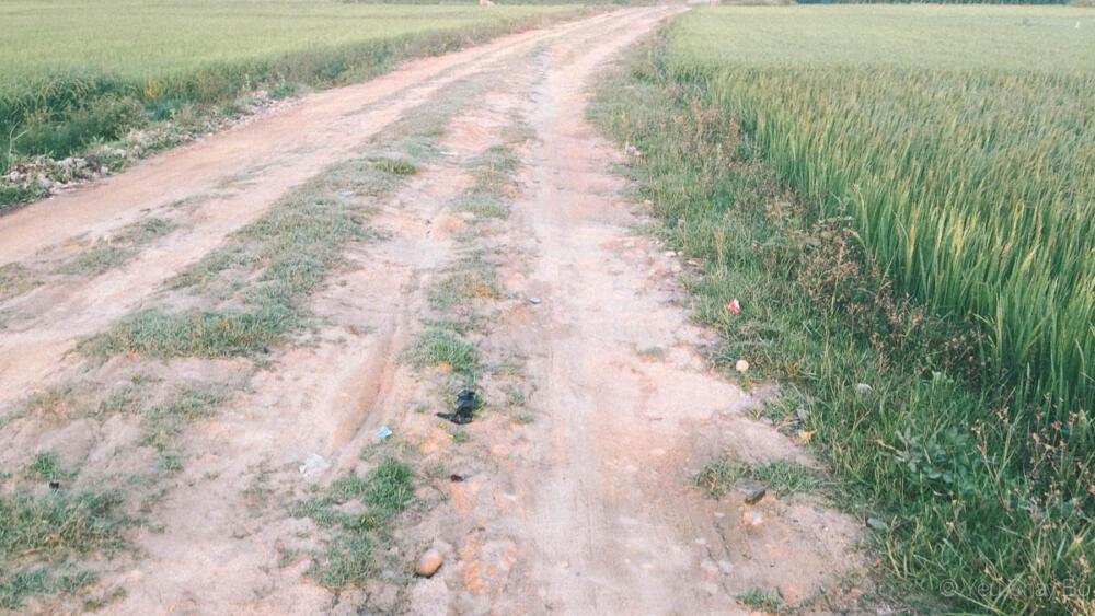 Đường chạy địa hình thôn quê