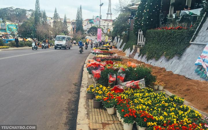 Dốc Lê Đại Hành đang được cải tạo chuẩn bị cho Lễ Hội Hoa vào tuần sau